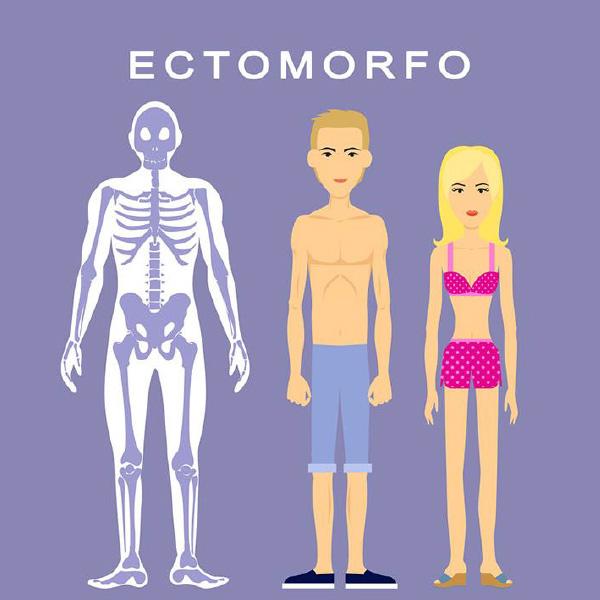 ectomorfo-categoria-de-biotipo-do-corpo-humano