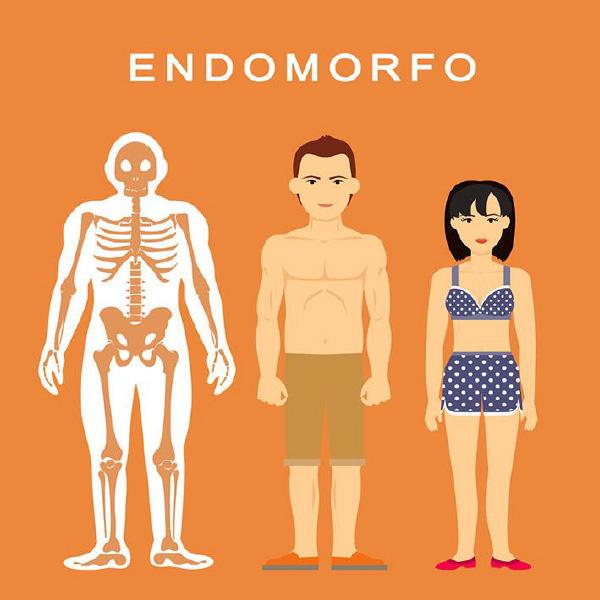 endomorfo-categoria-de-biotipo-do-corpo-humano