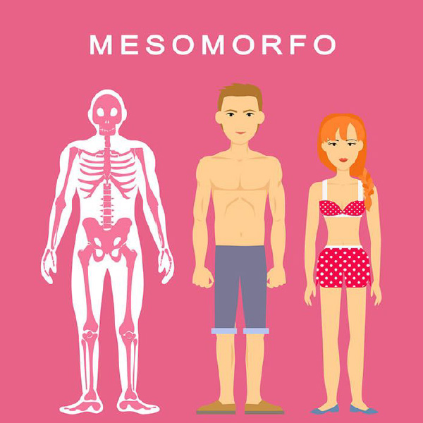 mesomorfo-categoria-de-biotipo-do-corpo-humano